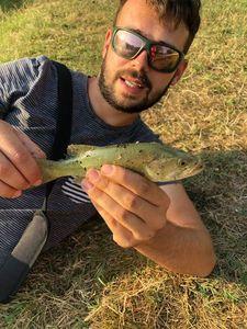 Largemouth Bass — Mathieu ALMUNIA