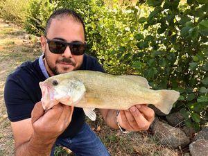 Black Bass (Achigan à Grande Bouche) — TC Turko Ezici