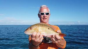 Mutton Snapper — Tynilla Fishing