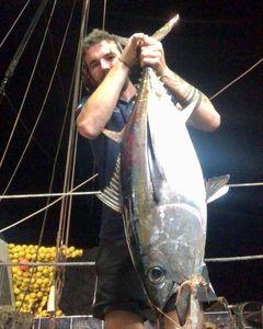 Bigeye Tuna (Pacific)