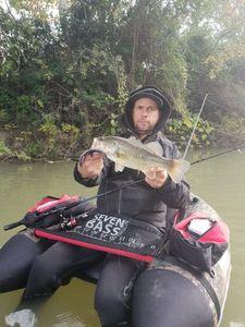 Largemouth Bass — Arborigene Arborigene