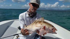 merou de nassau — Guillaume pêche Guadeloupe