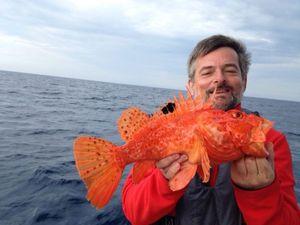 Red Scorpionfish — Xavier Lebrun