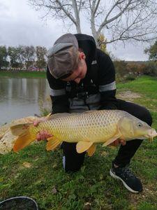 Common Carp — Adrien Fisherman