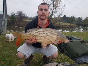 Common Carp — Sebastien Rateau