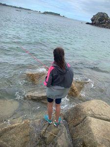 European Bass (Seabass) — Aventure Pêche Bretagne APB