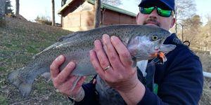 Truite Arc-en-Ciel — Fisherman Olo