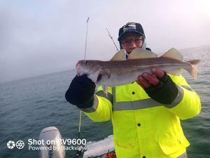 Atlantic Cod — Olivier Levallois