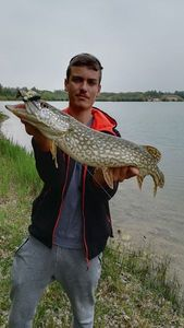 Northern Pike — Hugo Salas