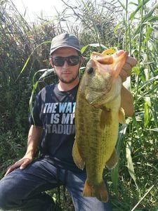 Largemouth Bass — Rudy Fabris