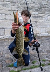 Northern Pike — Abel Gautry