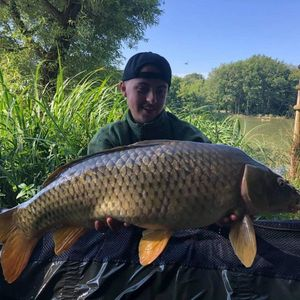 Mirror Carp — Thomas Pecout