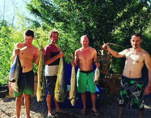 Yellowfin Tuna — Tom Legros