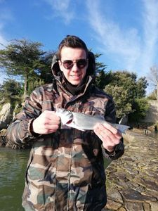 European Bass — Bastien Gendreau