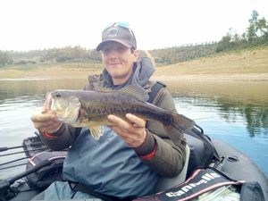 Largemouth Bass — David  Vicente