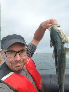 European Bass (Seabass) — Emmanuel Prier