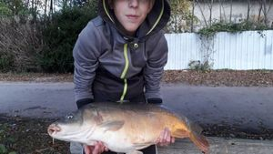 Leather Carp — Lucas And Fish