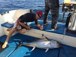 Southern Bluefin Tuna — Arborigene Arborigene