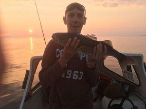 European Bass (Seabass) — Julien PAYRAT