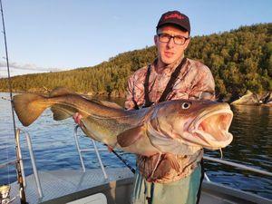 Morue de l'Atlantique — Momolle Kestufish.com