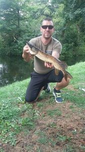 Northern Pike — Steve Adam