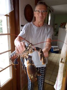 European Lobster — Jean Jacques Frison