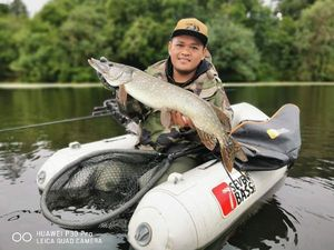 Northern Pike — BOUN-THOEUN Chay