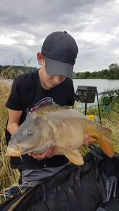 Mirror Carp — Lucas And Fish