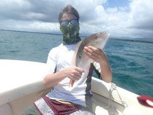 Vivaneau Sorbe — Anthony guide pêche Guadeloupe