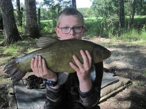 Tench — Fisher _-