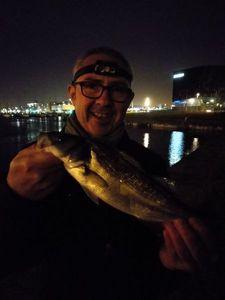 European Bass (Seabass) — David Lahoz