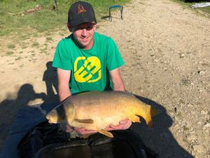 Common Carp — Jeremy Trocherie