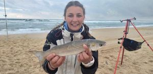 Golden Grey Mullet — Manon Mainvis