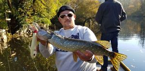 Northern Pike — Maxime Pecheux