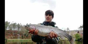 Rainbow Trout — Corto Oliva