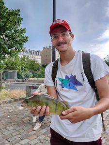 European Perch — Youssef El Amrani
