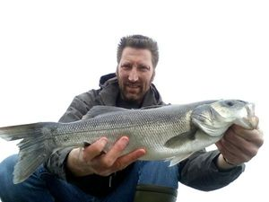 European Bass — Yvan Cornet