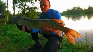 Northern Pike — Benj Gabber