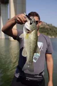Largemouth Bass — Muhammed Sisman