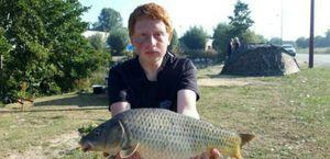 Common Carp — Lucas Lavisse