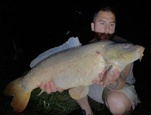 Mirror Carp — Stephane Blanchon