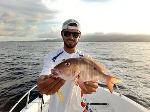 Red Porgy