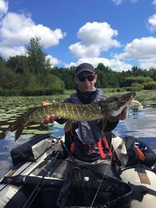 Northern Pike — Valentin 1