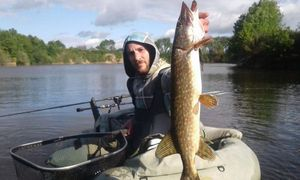 Northern Pike — Quentin Cailleau
