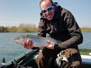 Rainbow Trout — Davy Boschat