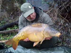 Mirror Carp — Damien Guarrera