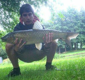 Grass Carp — Alex Mourier