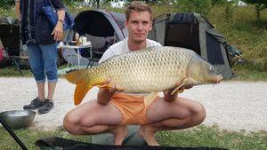 Common Carp — Romain Morvan