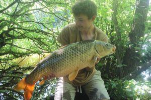 Carpe Commune — P'tit Dard Carp Fishing
