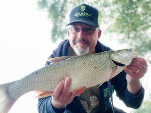 Aspe — Fisherman Olo